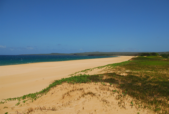 Papohaku Beach, Looking North, Molokai, Maui County, Hawaii, photo by Patrick (Pat) Michael McNally